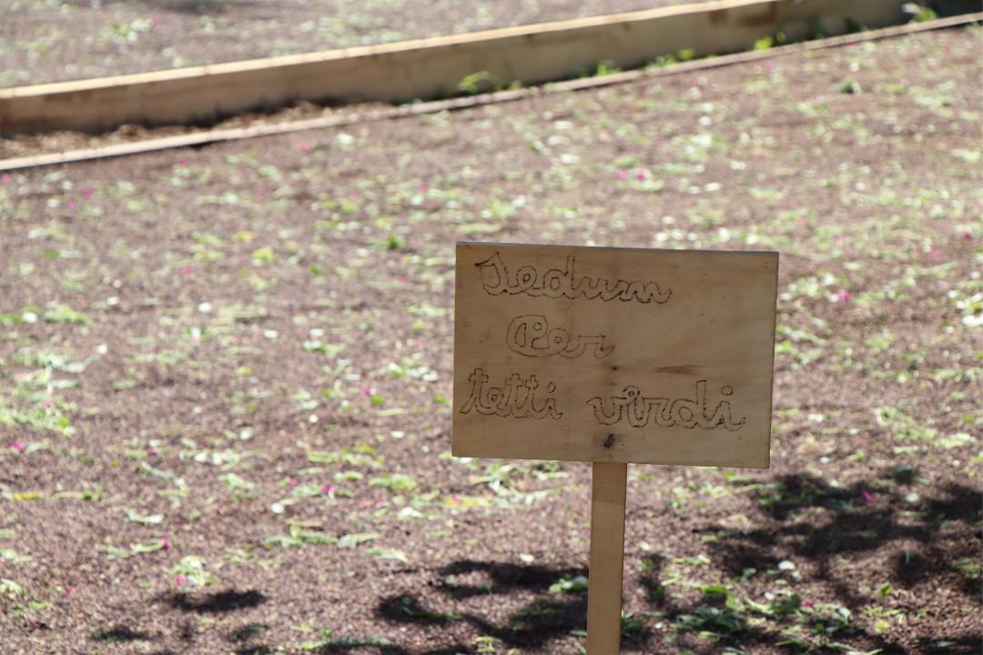 Il verde pensile per Fondazione IRPEA